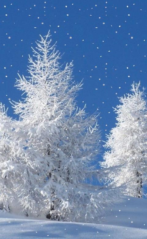 все картинки для телефона зима живые раз сейчас