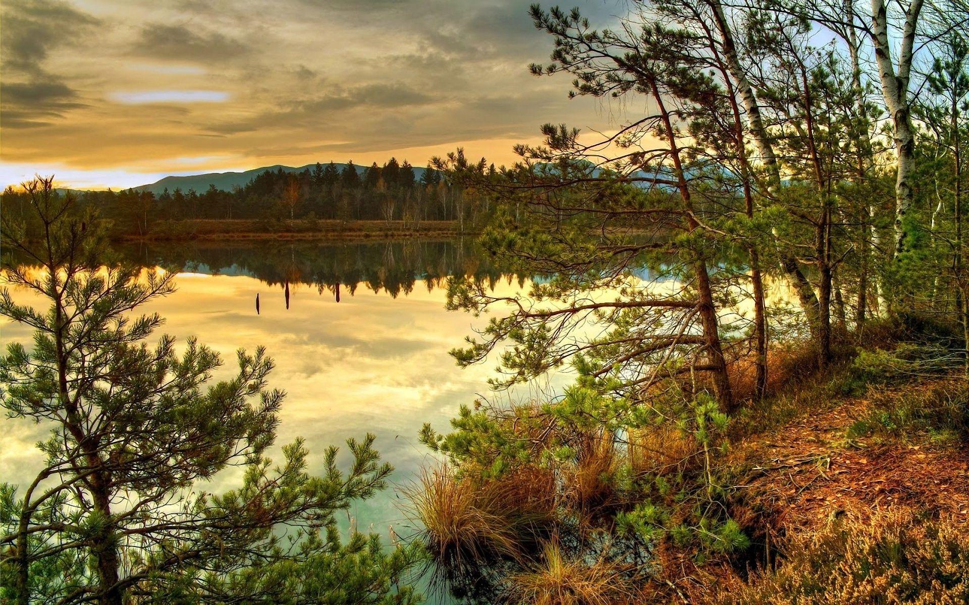 причинах картинки на рабочий стол природа лес озера реки облака меня как раз