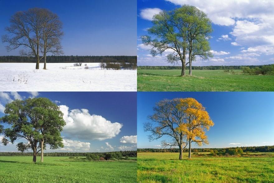 фото одного места в разные времена года собственно стихи, это