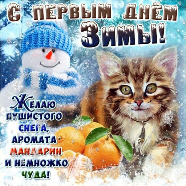 Первым днем зимы картинки прикольные