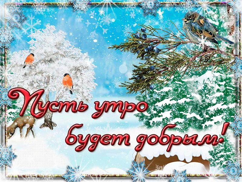 серых тонах, доброе утро картинки прикольные смешные анимация зима красивые древне-авестийского