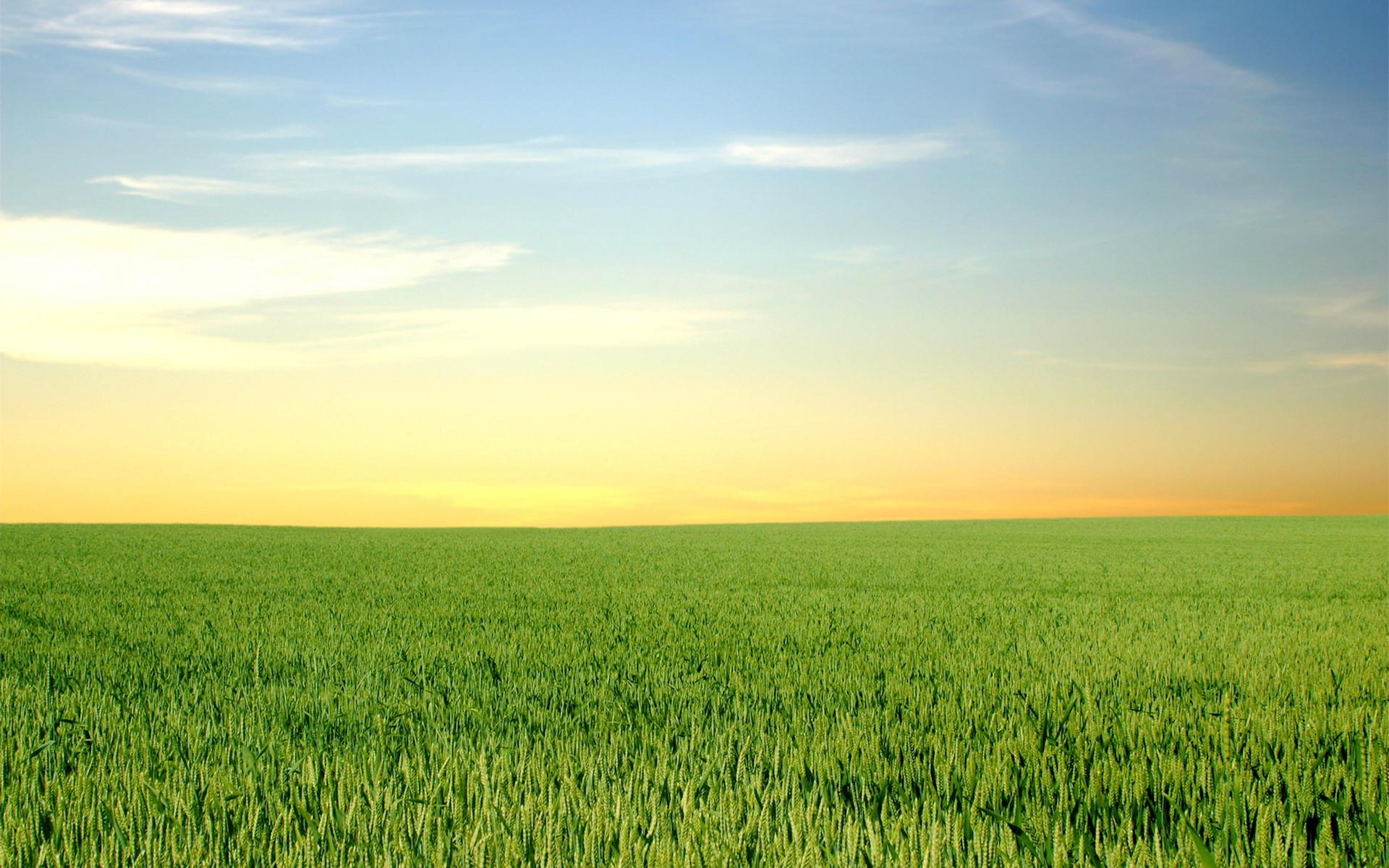 Картинки на тему горизонт