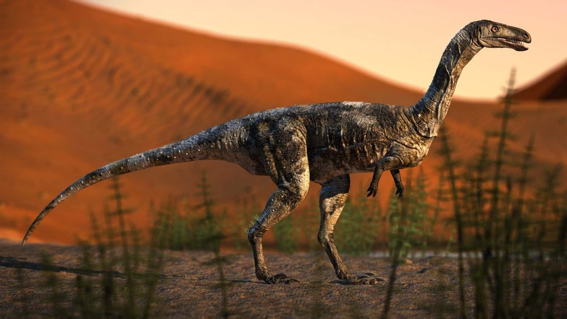 Виды хищных динозавров картинки