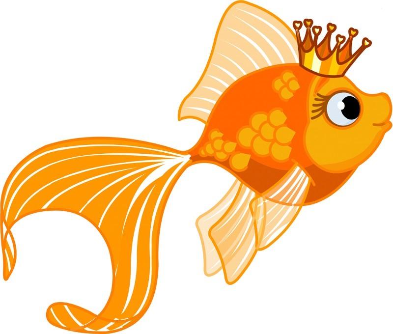 Картинки золотая рыбка (30 фото) • Прикольные картинки и ...
