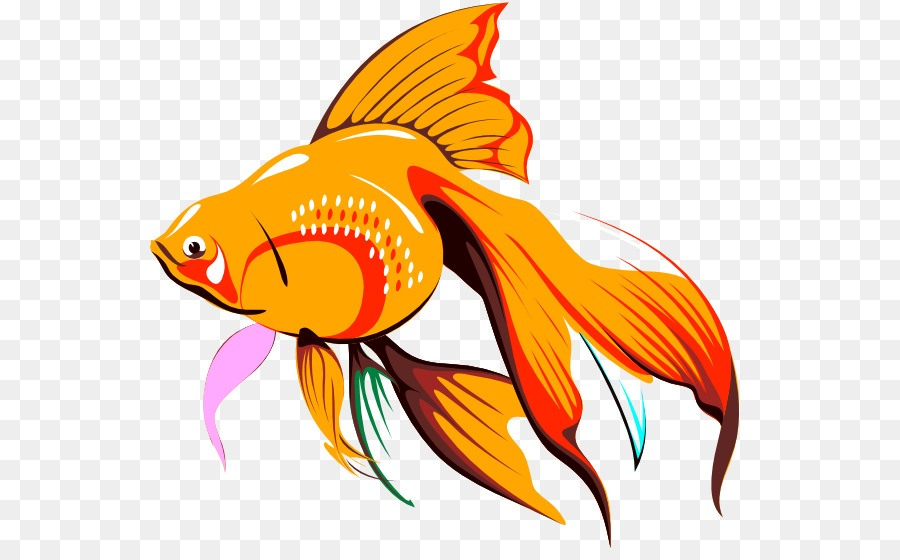 Картинка золотая рыбка котлас
