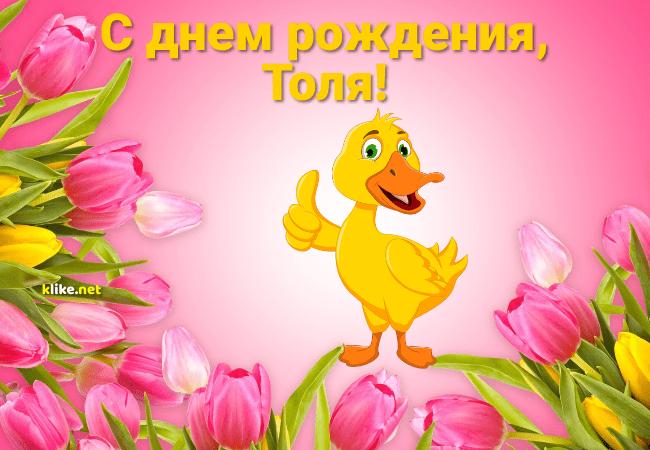 pozdravleniya-s-dnem-rozhdeniya-alena-otkritki foto 4