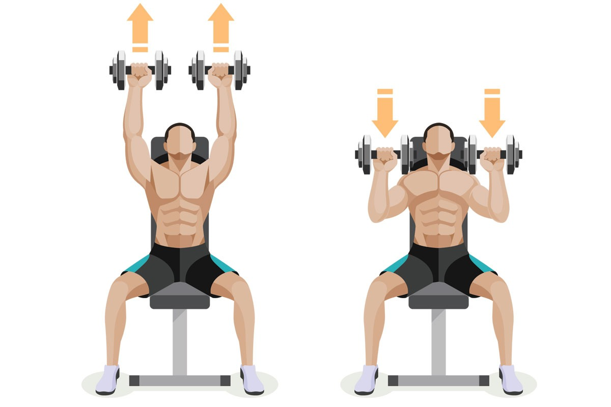 упражнения для похудения спины с гантелями